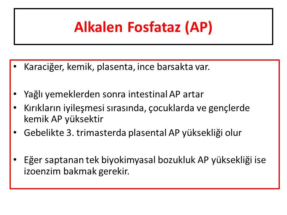 Alkalen Fosfataz (AP) Karaciğer, kemik, plasenta, ince barsakta var. Yağlı yemeklerden sonra intestinal AP artar Kırıkların iyileşmesi sırasında, çocu