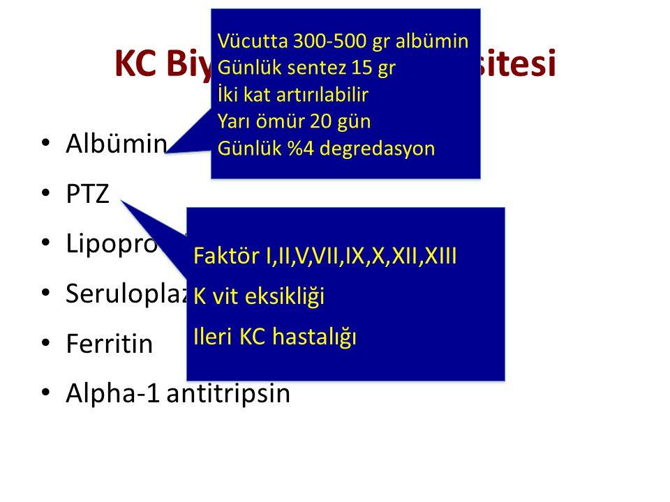 KC Biyosentetik Kapasitesi Albümin PTZ Lipoprotein Seruloplazmin Ferritin Alpha-1 antitripsin Vücutta 300-500 gr albümin Günlük sentez 15 gr İki kat a