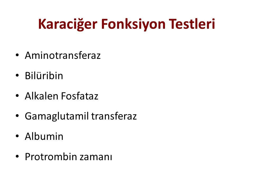 Karaciğer Fonksiyon Testleri Aminotransferaz Bilüribin Alkalen Fosfataz Gamaglutamil transferaz Albumin Protrombin zamanı