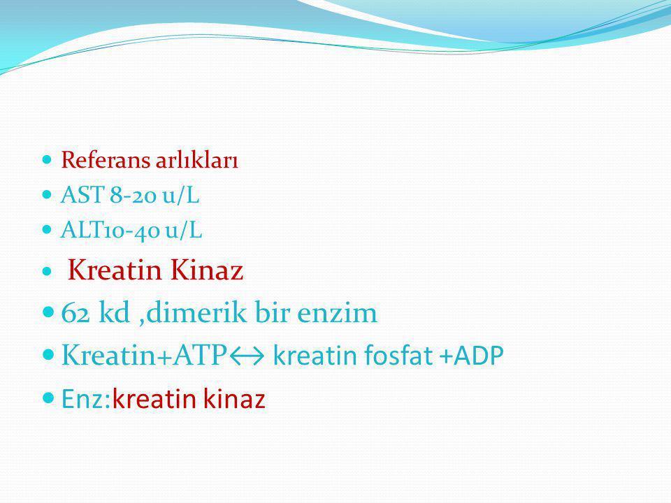 Referans arlıkları AST 8-20 u/L ALT10-40 u/L Kreatin Kinaz 62 kd,dimerik bir enzim Kreatin+ATP↔ kreatin fosfat +ADP Enz:kreatin kinaz