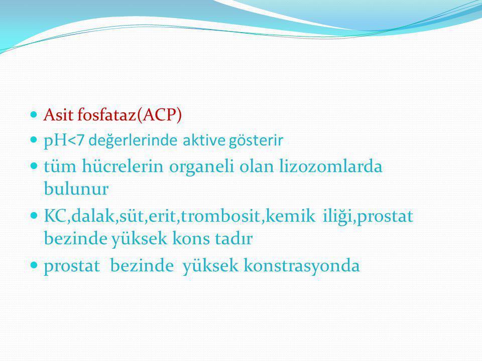 Asit fosfataz(ACP) pH<7 değerlerinde aktive gösterir tüm hücrelerin organeli olan lizozomlarda bulunur KC,dalak,süt,erit,trombosit,kemik iliği,prostat