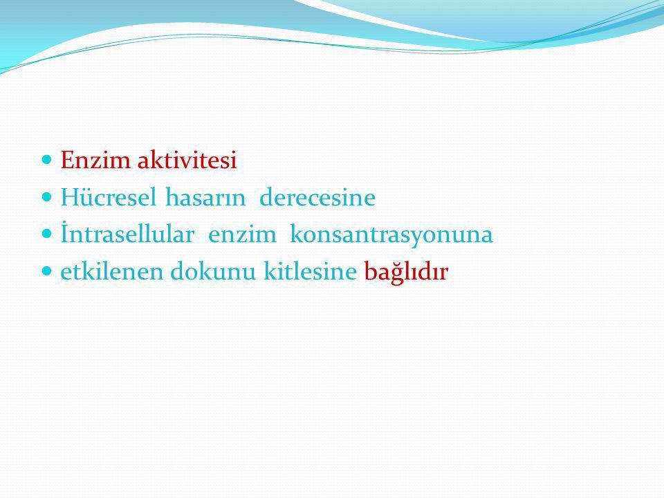 Enzim aktivitesi Hücresel hasarın derecesine İntrasellular enzim konsantrasyonuna etkilenen dokunu kitlesine bağlıdır