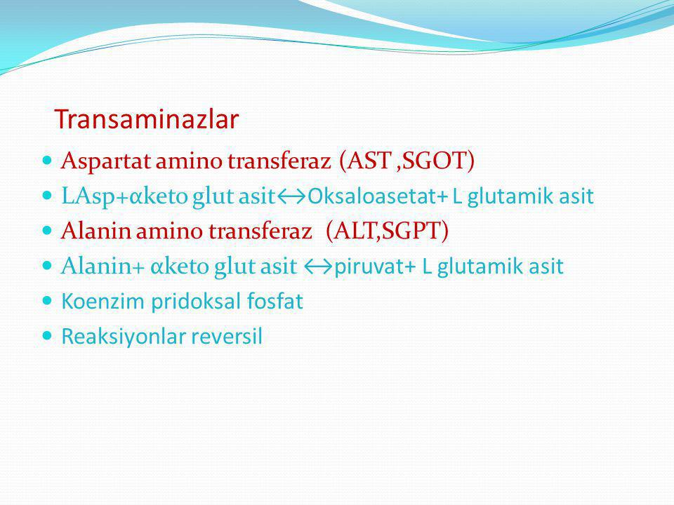Transaminazlar Aspartat amino transferaz (AST,SGOT) LAsp+αketo glut asit↔Oksaloasetat+ L glutamik asit Alanin amino transferaz (ALT,SGPT) Alanin+ αket