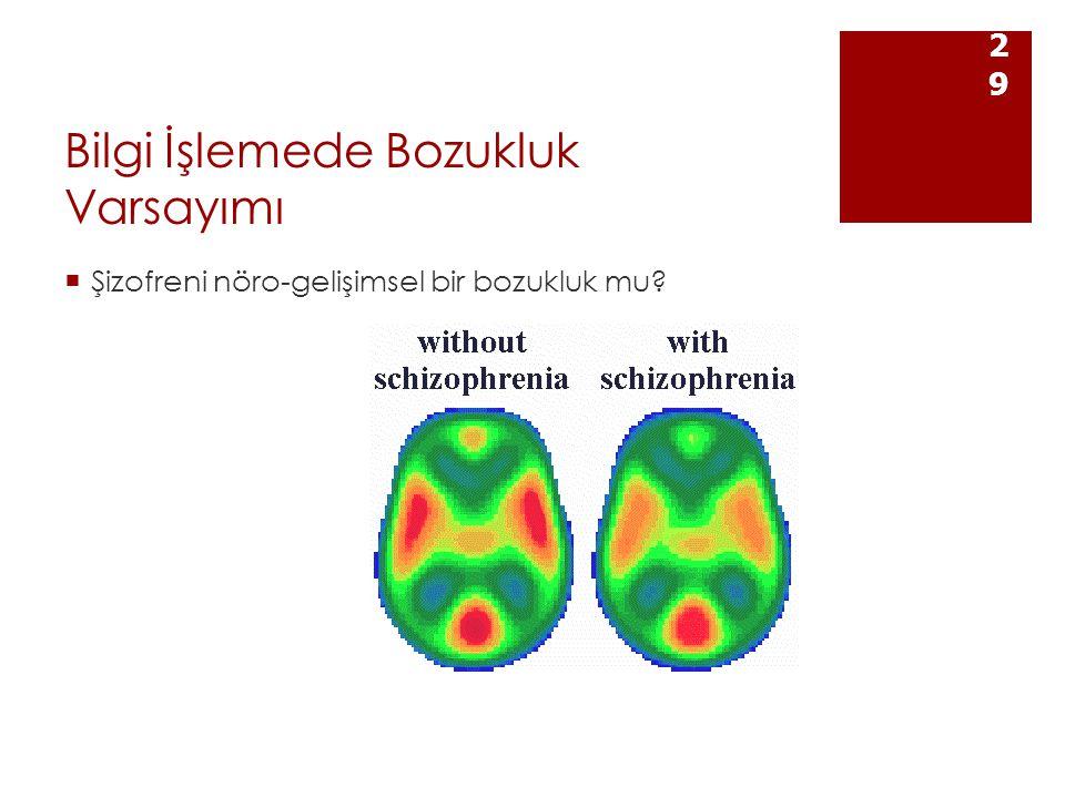 Bilgi İşlemede Bozukluk Varsayımı  Şizofreni nöro-gelişimsel bir bozukluk mu? 29
