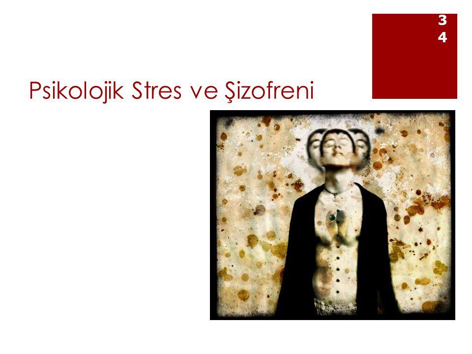 Psikolojik Stres ve Şizofreni 34