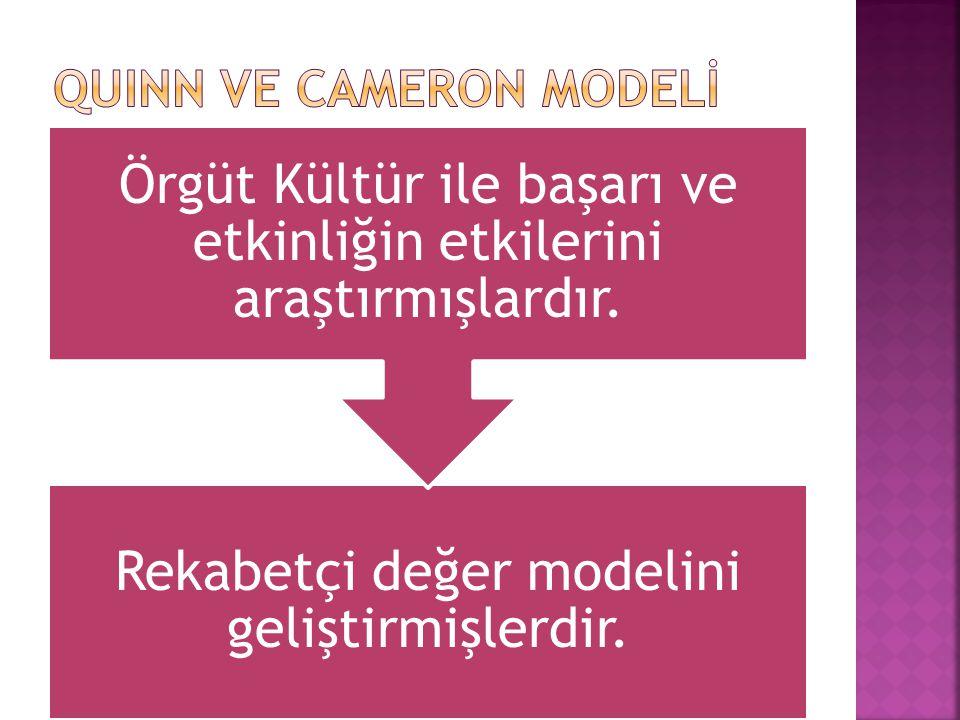 Rekabetçi değer modelini geliştirmişlerdir.
