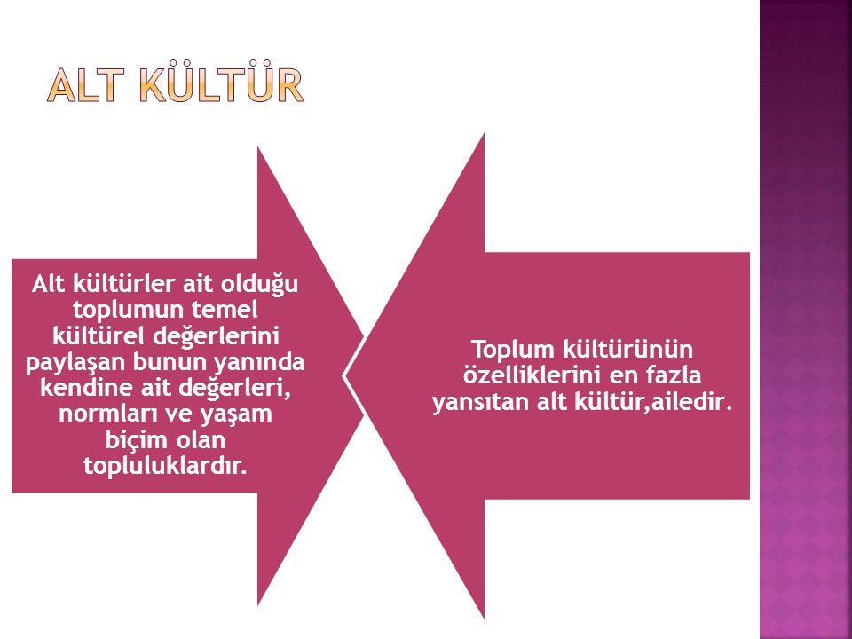 Alt kültürler ait olduğu toplumun temel kültürel değerlerini paylaşan bunun yanında kendine ait değerleri, normları ve yaşam biçim olan topluluklardır.