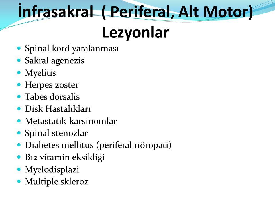 İnfrasakral ( Periferal, Alt Motor) Lezyonlar Spinal kord yaralanması Sakral agenezis Myelitis Herpes zoster Tabes dorsalis Disk Hastalıkları Metastatik karsinomlar Spinal stenozlar Diabetes mellitus (periferal nöropati) B12 vitamin eksikliği Myelodisplazi Multiple skleroz