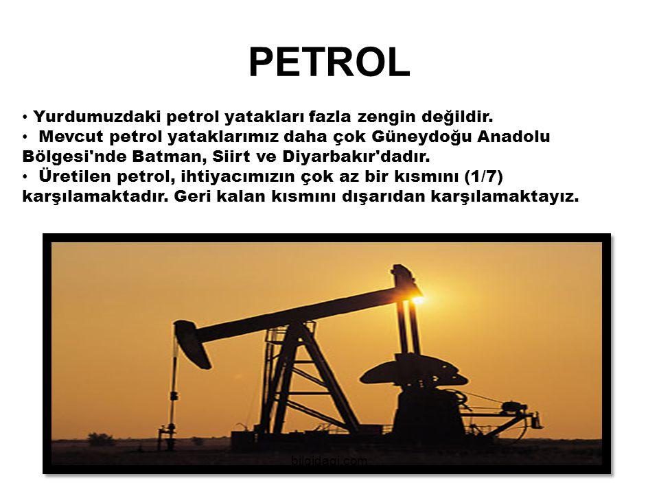 Yurdumuzdaki petrol yatakları fazla zengin değildir. Mevcut petrol yataklarımız daha çok Güneydoğu Anadolu Bölgesi'nde Batman, Siirt ve Diyarbakır'dad