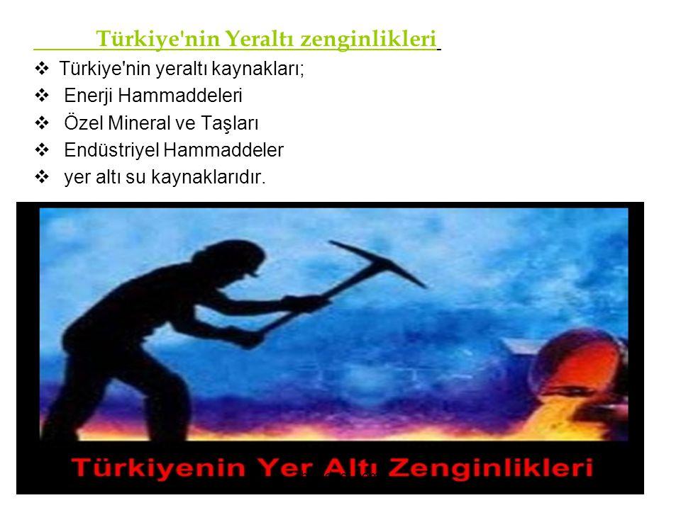 Türkiye'nin Yeraltı zenginlikleri TTürkiye'nin yeraltı kaynakları;  Enerji Hammaddeleri  Özel Mineral ve Taşları  Endüstriyel Hammaddeler  yer a