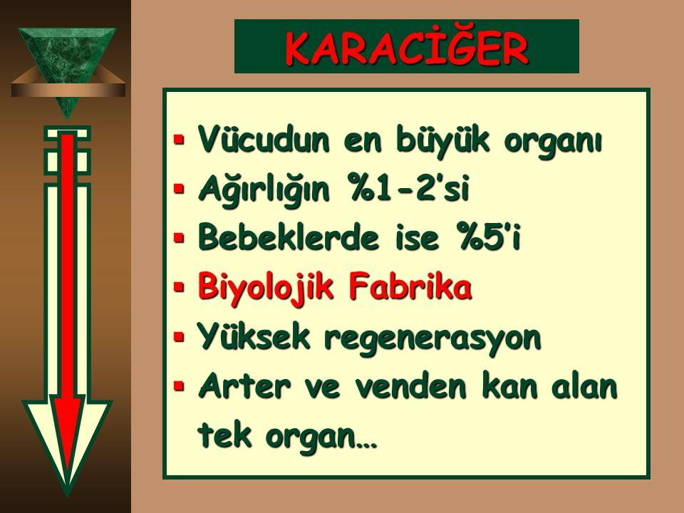 ÇÜNKÜ : ÇÜNKÜ :  Enzim testleri sadece KC kökenli değil  Kemik  Kas  Barsak  Böbrek  Akciğer  Eritrosit kaynaklı olabilir… !!!