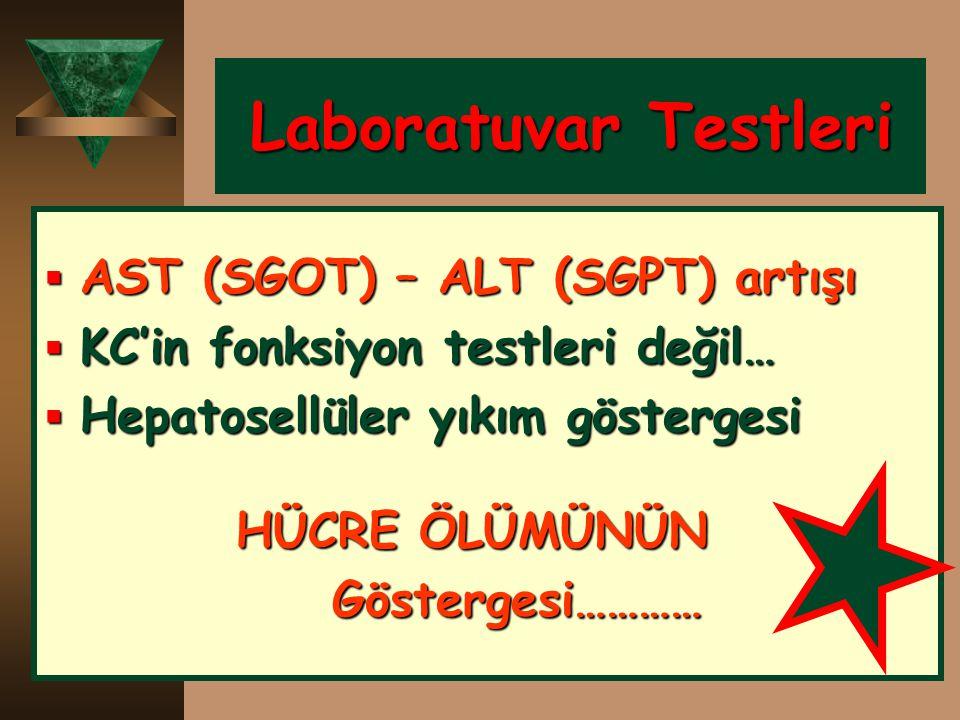 Laboratuvar Testleri Laboratuvar Testleri  AST (SGOT) – ALT (SGPT) artışı  KC'in fonksiyon testleri değil…  Hepatosellüler yıkım göstergesi HÜCRE Ö