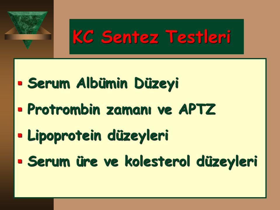 KC Sentez Testleri  Serum Albümin Düzeyi  Protrombin zamanı ve APTZ  Lipoprotein düzeyleri  Serum üre ve kolesterol düzeyleri