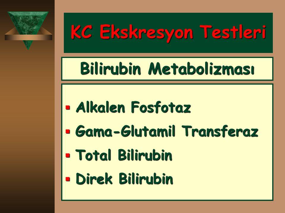 KC Ekskresyon Testleri  Alkalen Fosfotaz  Gama-Glutamil Transferaz  Total Bilirubin  Direk Bilirubin Bilirubin Metabolizması