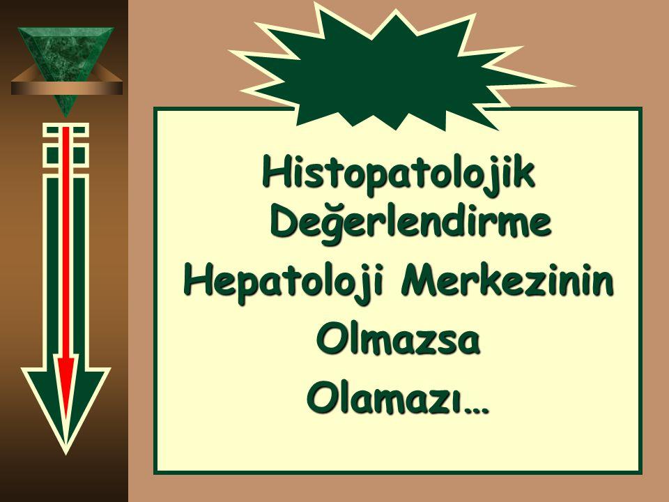 Histopatolojik Değerlendirme Hepatoloji Merkezinin OlmazsaOlamazı…