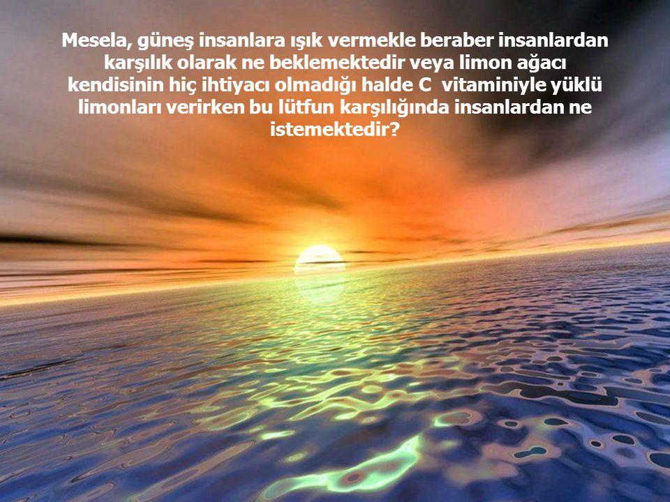 Allah, dünya ve ahiret nimetlerinin bir takım sebeplerle meydana gelmesini ezelde takdir etmiş ve şarta bağlamıştır. Öyle ise onların sebepsiz meydana