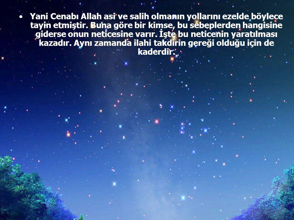 Yani Cenabı Allah asi ve salih olmanın yollarını ezelde böylece tayin etmiştir.