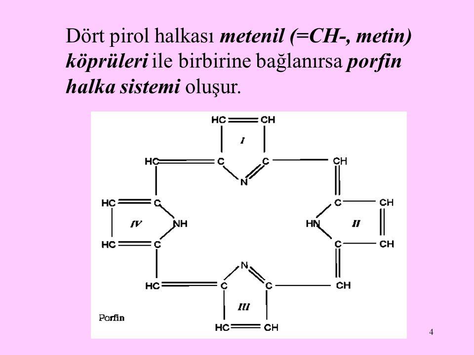 15 Dört molekül porfobilinojen, üroporfirinojen I sentaz (porfobilinojen deaminaz) ve üroporfirinojen III kosentaz etkisiyle hidroksimetilbilan ara ürünü üzerinden üroporfirinojen III (ÜRO III) oluşturur.