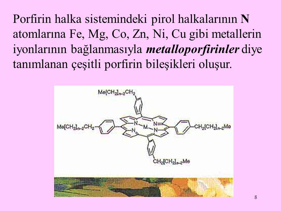 9 En yaygın olarak bulunan biyolojik metalloporfirinler demir ve magnezyum içerenlerdir.