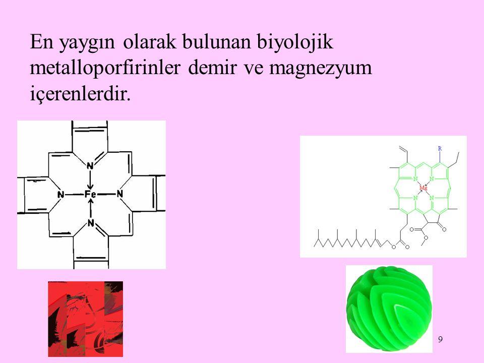 10 Eritrositlerde bulunan ve kana kırmızı rengini veren hemoglobinin yapısında bulunan hem, önemli bir demir-porfirin bileşiğidir.