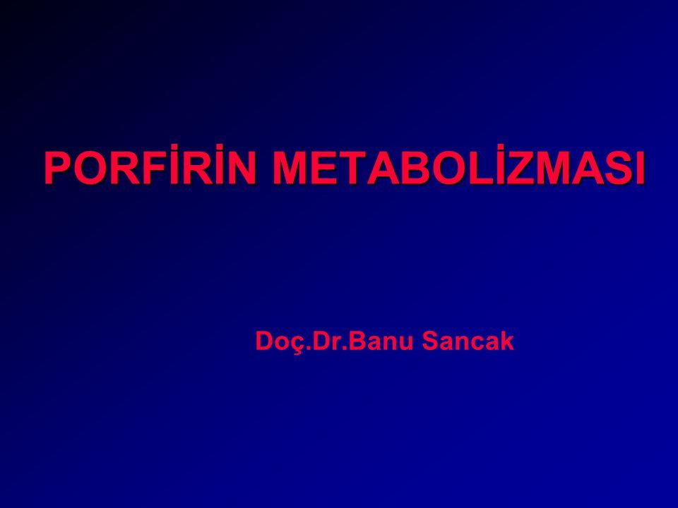 PORFİRİN METABOLİZMASI Doç.Dr.Banu Sancak