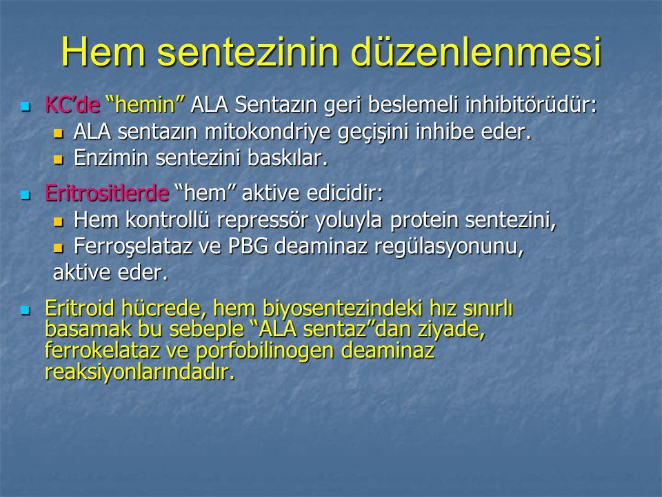 Hem sentezinin düzenlenmesi KC'de hemin ALA Sentazın geri beslemeli inhibitörüdür: KC'de hemin ALA Sentazın geri beslemeli inhibitörüdür: ALA sentazın mitokondriye geçişini inhibe eder.