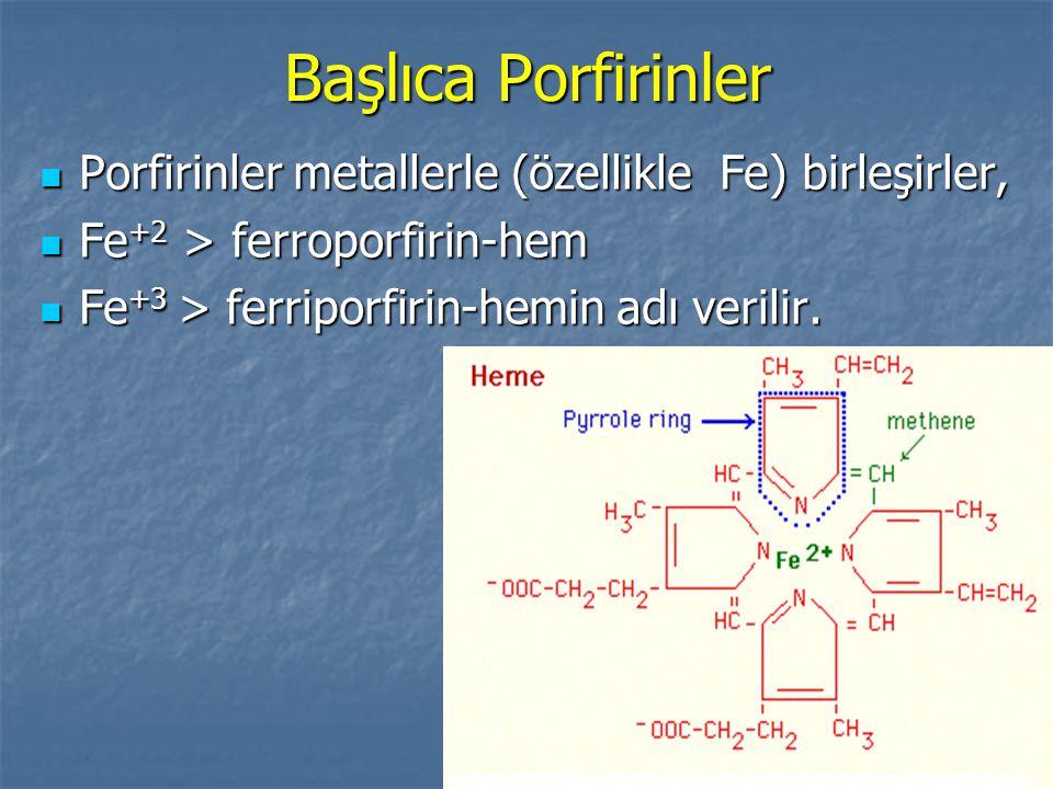 Başlıca Porfirinler Porfirinler metallerle (özellikle Fe) birleşirler, Porfirinler metallerle (özellikle Fe) birleşirler, Fe +2 > ferroporfirin-hem Fe