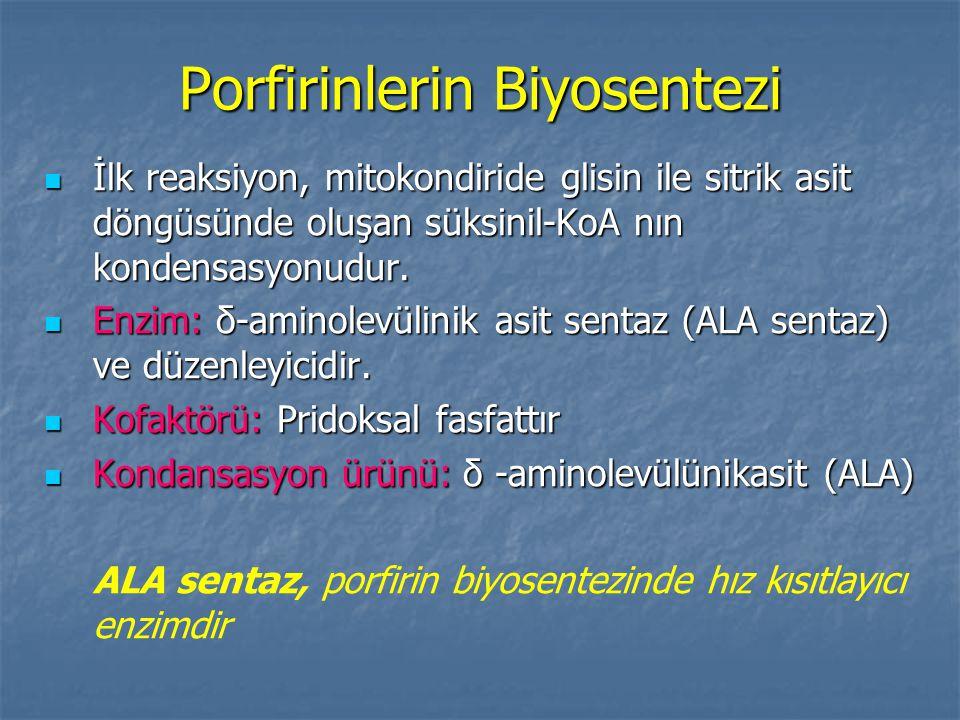 Porfirinlerin Biyosentezi İlk reaksiyon, mitokondiride glisin ile sitrik asit döngüsünde oluşan süksinil-KoA nın kondensasyonudur.