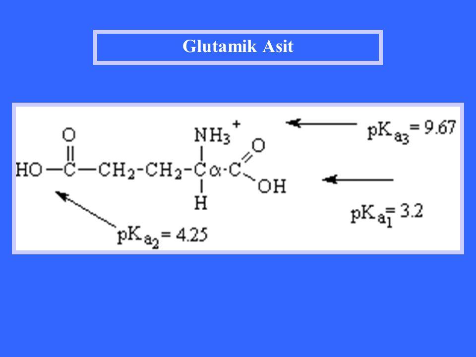 Glutamik Asit