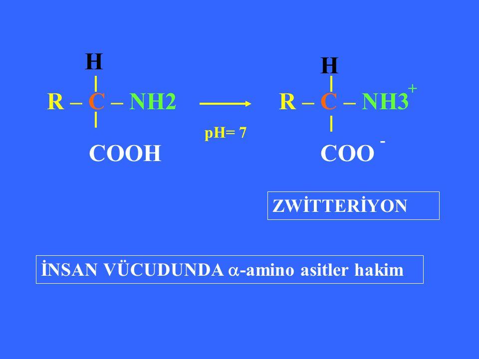 R – C – NH2 R – C – NH3 COOH H H COO - + pH= 7 ZWİTTERİYON İNSAN VÜCUDUNDA  -amino asitler hakim