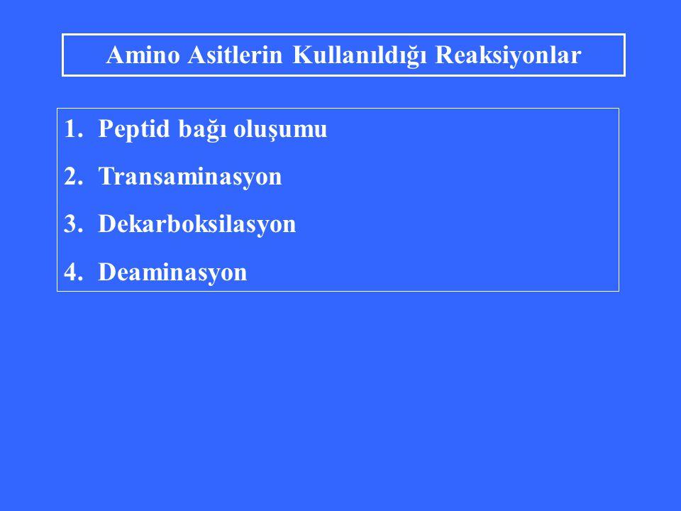 Amino Asitlerin Kullanıldığı Reaksiyonlar 1.Peptid bağı oluşumu 2.Transaminasyon 3.Dekarboksilasyon 4.Deaminasyon