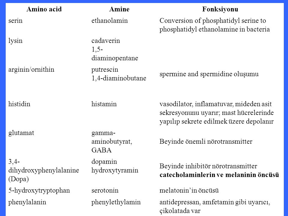 Amino acidAmineFonksiyonu serinethanolamin Conversion of phosphatidyl serine to phosphatidyl ethanolamine in bacteria lysincadaverin 1,5- diaminopenta