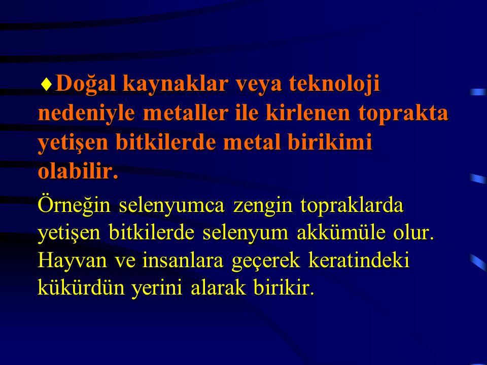  Doğal kaynaklar veya teknoloji nedeniyle metaller ile kirlenen toprakta yetişen bitkilerde metal birikimi olabilir. Örneğin selenyumca zengin toprak