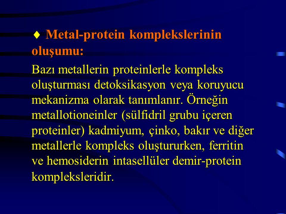  Metal-protein komplekslerinin oluşumu: Bazı metallerin proteinlerle kompleks oluşturması detoksikasyon veya koruyucu mekanizma olarak tanımlanır. Ör