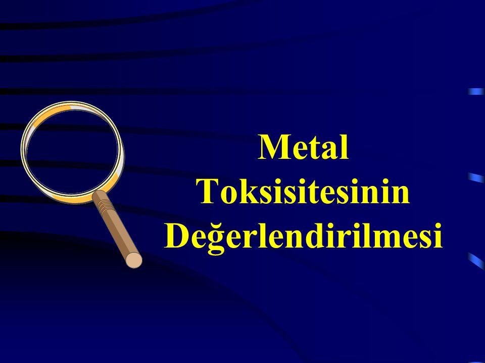 Metal Toksisitesinin Değerlendirilmesi