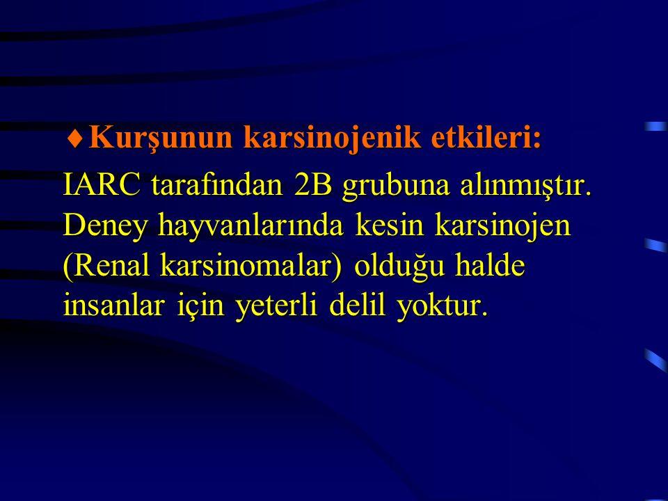  Kurşunun karsinojenik etkileri: IARC tarafından 2B grubuna alınmıştır. Deney hayvanlarında kesin karsinojen (Renal karsinomalar) olduğu halde insanl