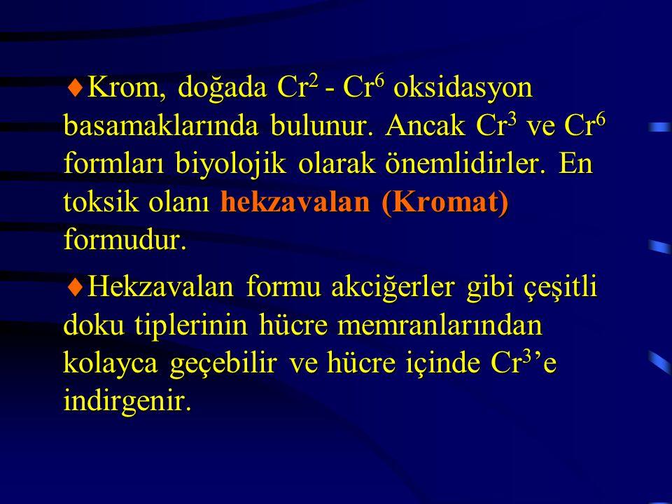  Krom, doğada Cr 2 - Cr 6 oksidasyon basamaklarında bulunur. Ancak Cr 3 ve Cr 6 formları biyolojik olarak önemlidirler. En toksik olanı hekzavalan (K