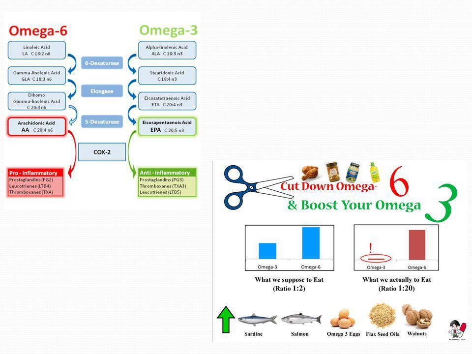 Balıkların omega-3 içerikleri de farklıdır. En çok omega-3 içeren balıklar soğuk su ya da derin dip balıklarıdır. Omega-3'ler balıkların soğuğa dayanı