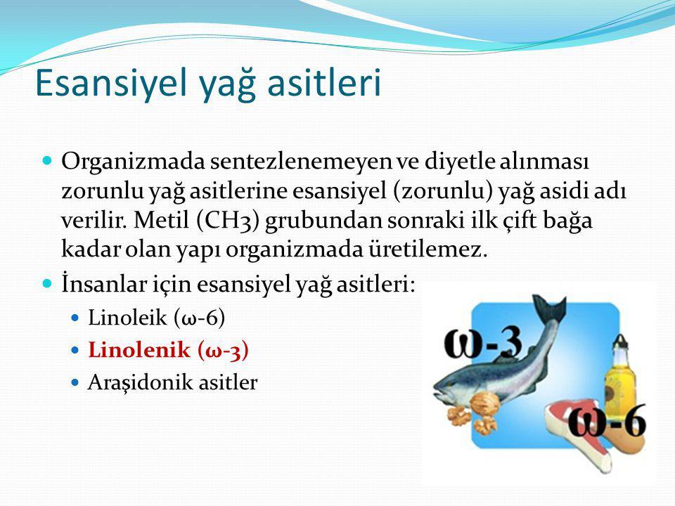 Omega-3'ten en zengin hayvansal ürün besin balık yağlarıdır.