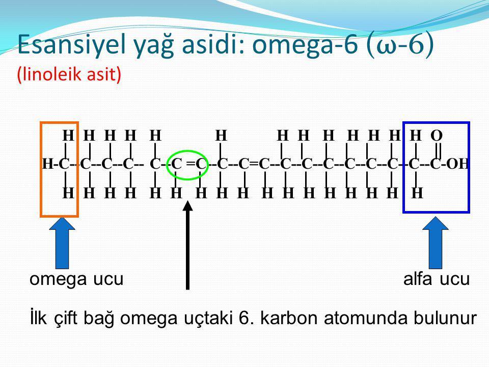 Esansiyel yağ asidi: omega-6 (ω-6) (linoleik asit) omega ucu alfa ucu İlk çift bağ omega uçtaki 6.