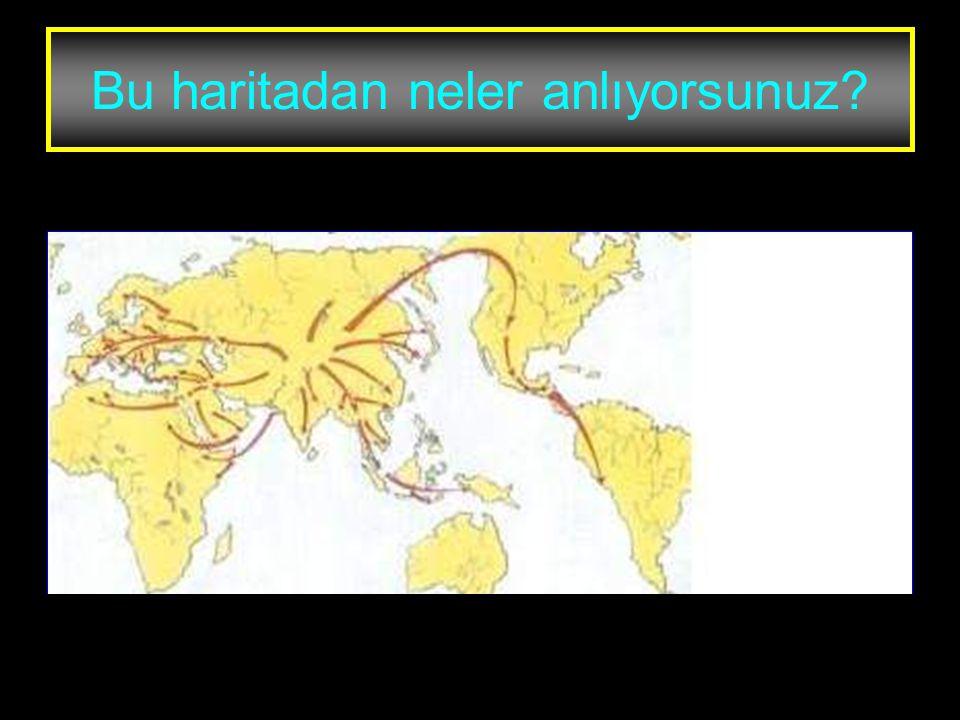 www.evdekisosyalci.com21