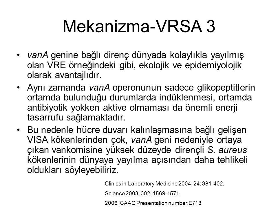 Mekanizma-VRSA 3 vanA genine bağlı direnç dünyada kolaylıkla yayılmış olan VRE örneğindeki gibi, ekolojik ve epidemiyolojik olarak avantajlıdır. Aynı