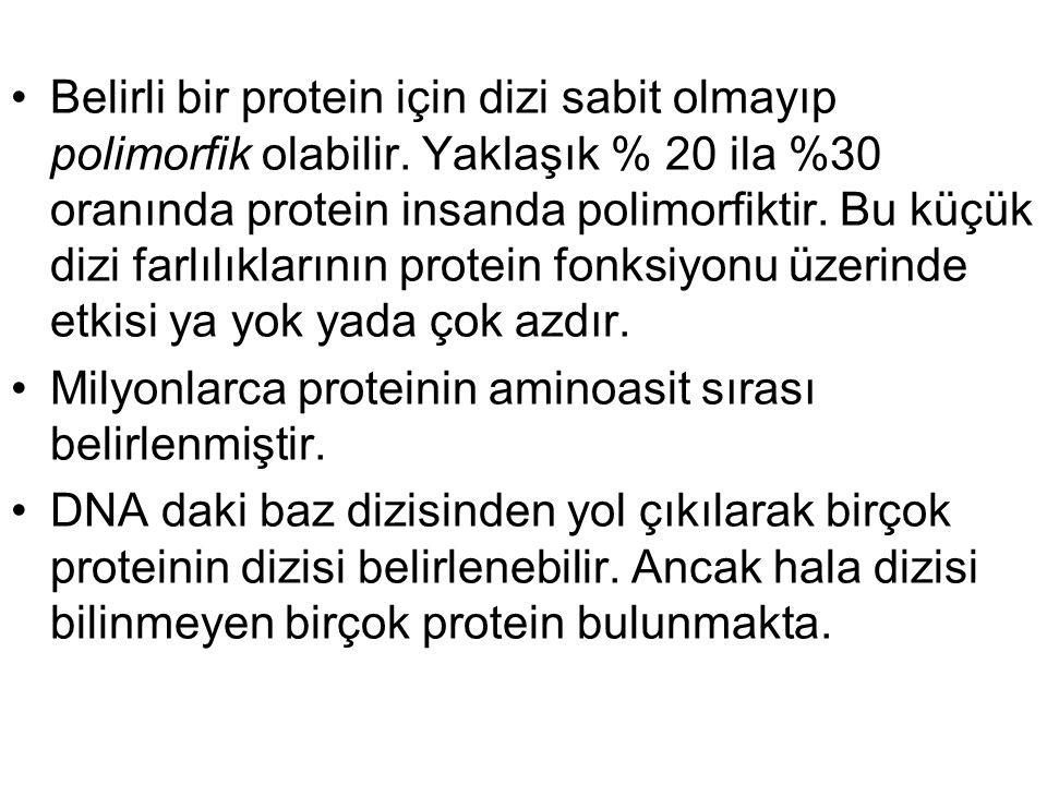Belirli bir protein için dizi sabit olmayıp polimorfik olabilir. Yaklaşık % 20 ila %30 oranında protein insanda polimorfiktir. Bu küçük dizi farlılıkl