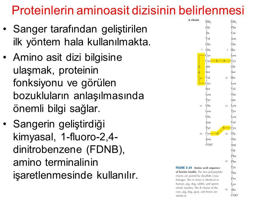 Proteinlerin aminoasit dizisinin belirlenmesi Sanger tarafından geliştirilen ilk yöntem hala kullanılmakta. Amino asit dizi bilgisine ulaşmak, protein