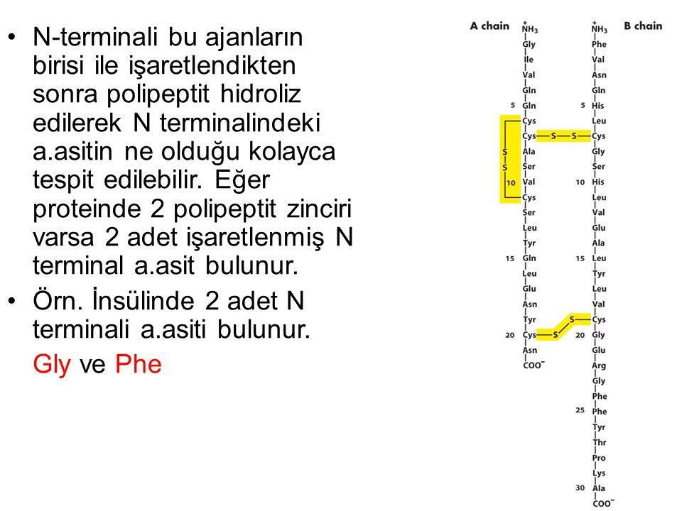 N-terminali bu ajanların birisi ile işaretlendikten sonra polipeptit hidroliz edilerek N terminalindeki a.asitin ne olduğu kolayca tespit edilebilir.