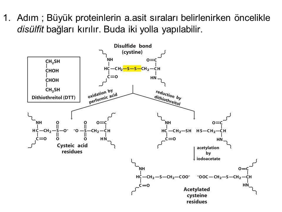1.Adım ; Büyük proteinlerin a.asit sıraları belirlenirken öncelikle disülfit bağları kırılır. Buda iki yolla yapılabilir.