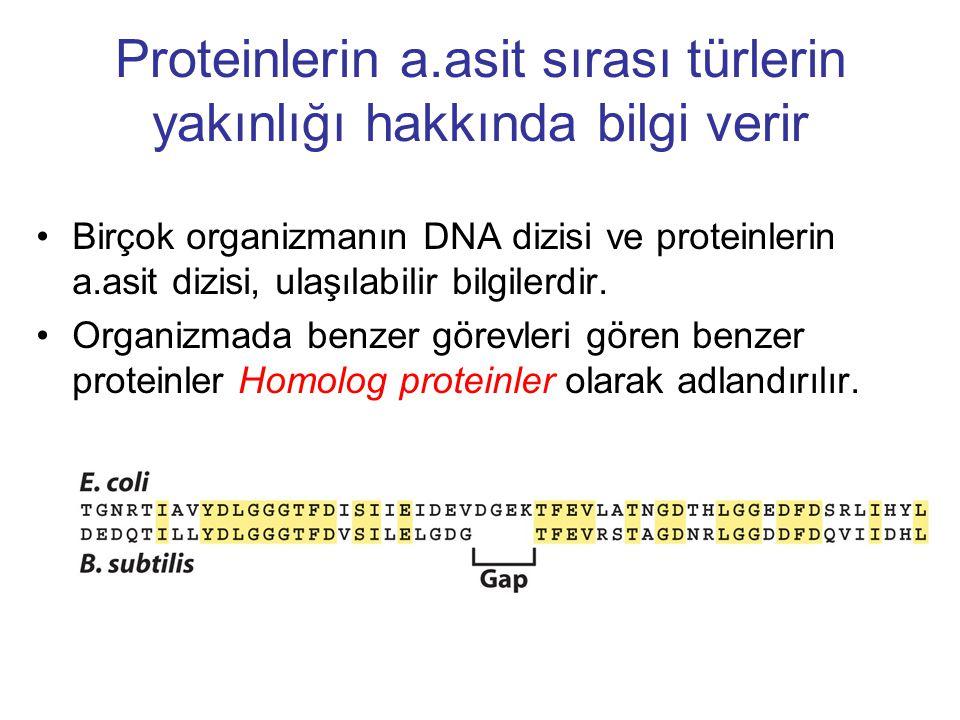 Proteinlerin a.asit sırası türlerin yakınlığı hakkında bilgi verir Birçok organizmanın DNA dizisi ve proteinlerin a.asit dizisi, ulaşılabilir bilgiler