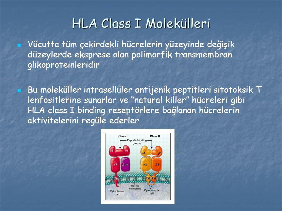 HLA Class I Molekülleri Vücutta tüm çekirdekli hücrelerin yüzeyinde değişik düzeylerde eksprese olan polimorfik transmembran glikoproteinleridir Bu mo