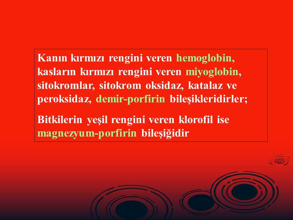 Kanın kırmızı rengini veren hemoglobin, kasların kırmızı rengini veren miyoglobin, sitokromlar, sitokrom oksidaz, katalaz ve peroksidaz, demir-porfiri