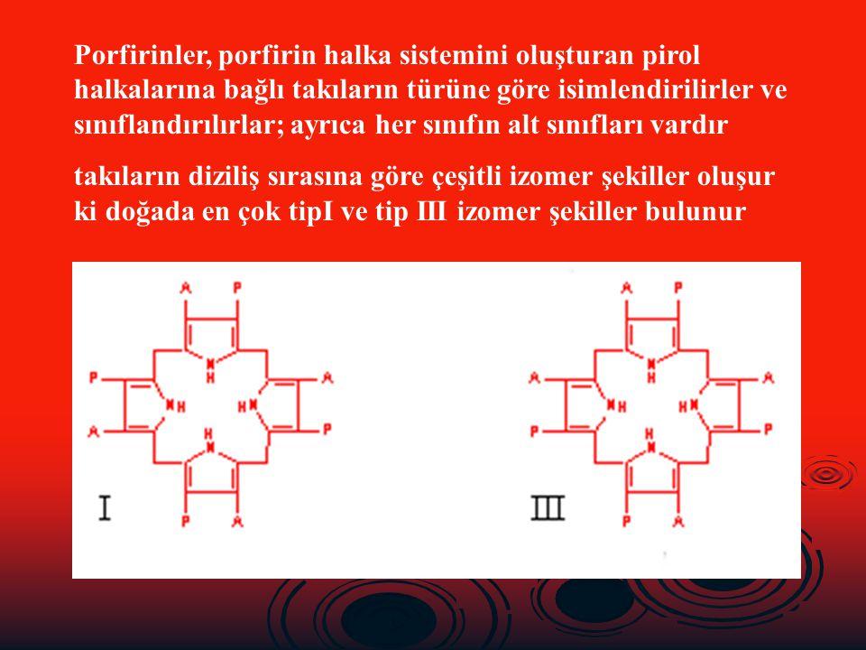 Porfirinler, porfirin halka sistemini oluşturan pirol halkalarına bağlı takıların türüne göre isimlendirilirler ve sınıflandırılırlar; ayrıca her sını